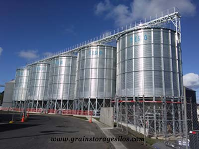 grain storage silos - Flat Bottom Silo, Hopper Silo, Feed