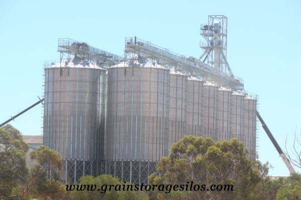 Feed hopper bottom silo 1000T Australia of Shelley