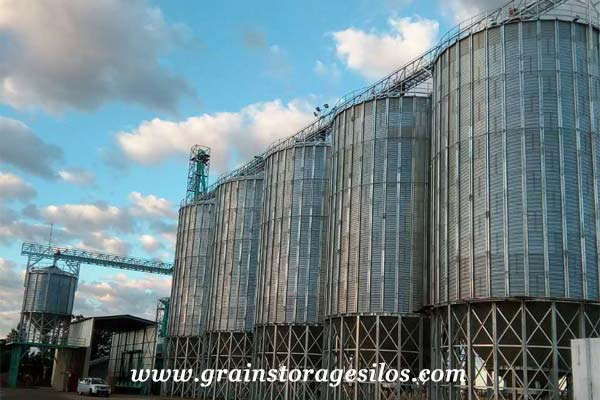 Corn hopper silo 500T Vietnam of Shelley Engineering