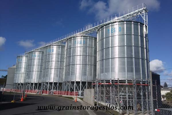 Wheat hopper bottom silos 1000T New Zealand of Shelley Engineering