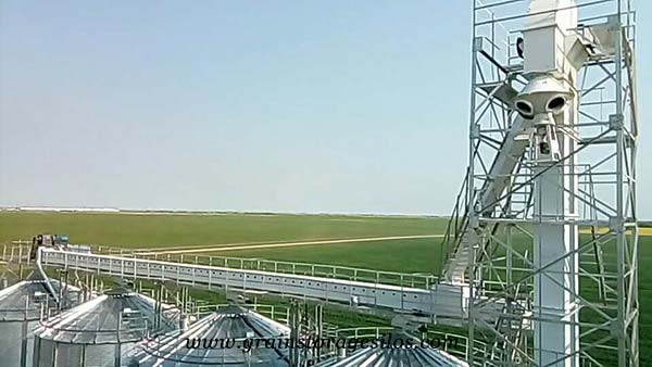Grain bucket elevator for 4 rice silos