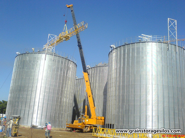 10000t flat bottom bin in Ukraine