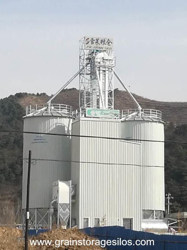 Galvanized grain silos run in Hebei Province
