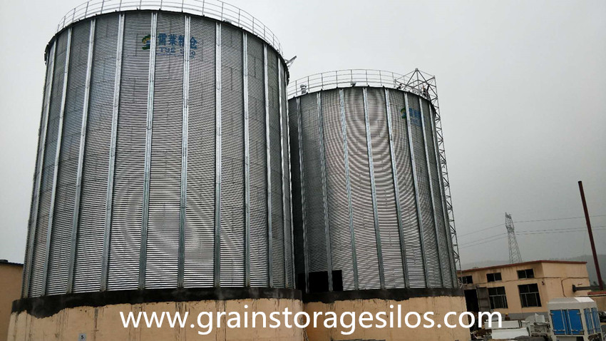Galvanized Grain Silo Installation in Shandong Province