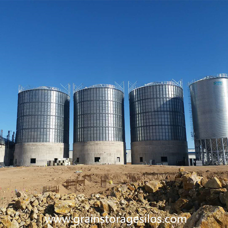 Rape seed storage silo installation in Inner Mongolia