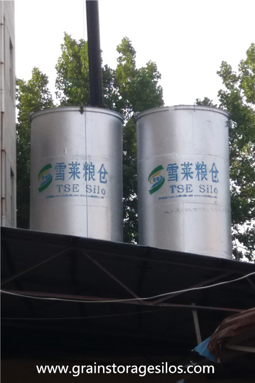 flour storage Silo Installation was Finished in Shandong Province