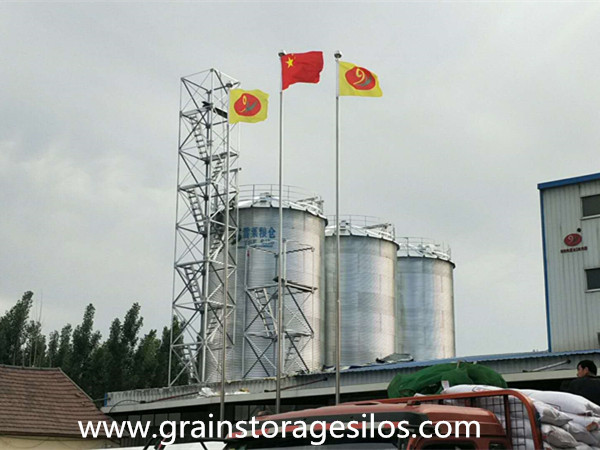 Bulk Grain Storage Silo is run well in Shandong Province