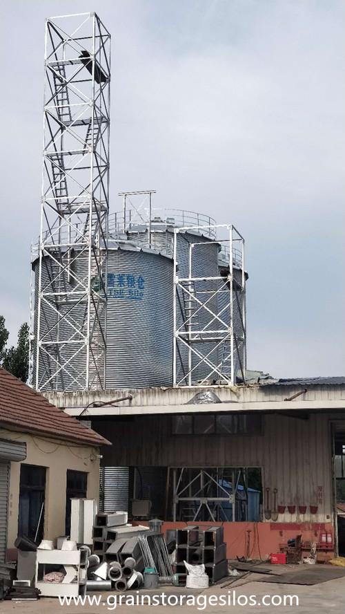 Grain Steel Silo Installation in Shandong Province