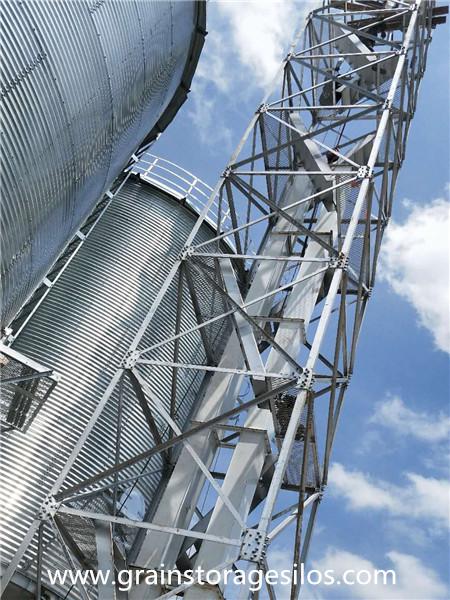 Maize silos run in Jiangsu province