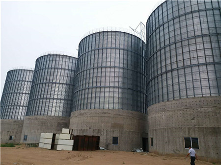 Rape Seeds Storage Silos in Inner Mongolia