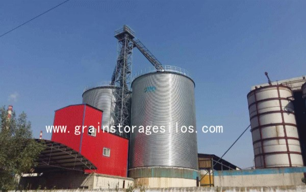 Starch Mill Plant Set up Corn Storage Silo Successfully